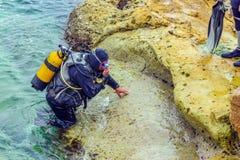 El buceador de Malta A entra en el mar Fotos de archivo libres de regalías