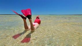 El bucear en bahía del tiburón almacen de metraje de vídeo