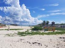 El bueaty de la escuela de la resaca del Golfo de México imagen de archivo