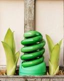 El bulbo de la luz verde adorna el jardín Foto de archivo libre de regalías