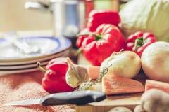 El bulbo, la pimienta roja y las zanahorias mienten a bordo Imágenes de archivo libres de regalías