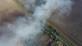 El burning de la paja del arroz en los campos Fume del burning de la paja del arroz en controles Fuego en el campo metrajes