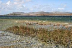 El Burren Fotos de archivo