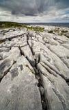 El Burren irlandés Imágenes de archivo libres de regalías