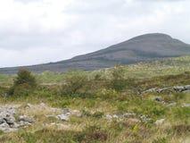 El Burren Irlanda Fotografía de archivo