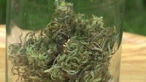 El cáñamo medicinal del cáñamo cosechado secó un vidrio de calidad de las semillas para la producción de ungüentos y lo bate conv metrajes