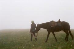 El Cáucaso, el caballo en la niebla. Imagen de archivo libre de regalías