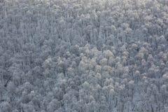 El Cáucaso las montañas de Rusia, Kabardino-Balkaria Escarcha encendido Imagen de archivo libre de regalías