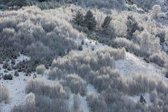 El Cáucaso las montañas de Rusia, Kabardino-Balkaria Escarcha encendido Foto de archivo libre de regalías