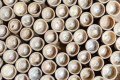 El círculo de la rebanada de bambú para el fondo adorna Imagen de archivo libre de regalías