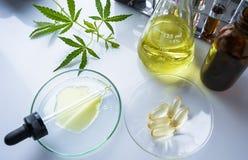 El c??amo, marijuana, aceite de c??amo es una medicina imagenes de archivo