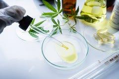 El c??amo, marijuana, aceite de c??amo es una medicina imagen de archivo