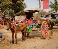 El caballo carts para a turistas que esperan en Innwa, Myanmar Foto de archivo