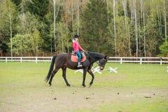 El caballo de montar a caballo joven de la deportista en la demostración ecuestre salta la competencia Paseo del adolescente un c Imagenes de archivo