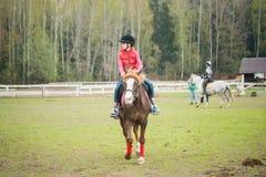 El caballo de montar a caballo joven de la deportista en la demostración ecuestre salta la competencia Paseo del adolescente un c Foto de archivo libre de regalías