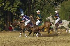 El caballo del mundial de PoloCrosse desliza la acción Imagen de archivo libre de regalías