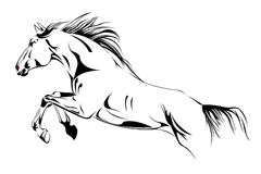 El caballo salta la ilustración del vector Imagenes de archivo