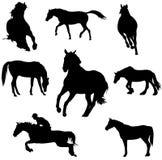 El caballo siluetea vector Imagenes de archivo