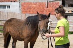 El caballo toma la medicina de un doctor joven Imagen de archivo