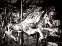 El caballo viejo del carrusel feliz va paseo de la diversión de la ronda Imagenes de archivo