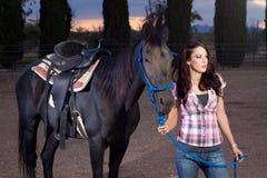 El caballo y el jinete Imagen de archivo libre de regalías