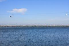 El cablecarril en el parque de las naciones en Lisboa Foto de archivo libre de regalías