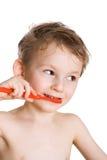 El cabrito limpia los dientes foto de archivo