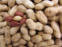 El cacahuete borrado imagen de archivo
