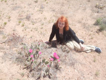 El cactus en las montañas floreció Foto de archivo libre de regalías