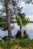 El caer en los árboles del río Foto de archivo libre de regalías