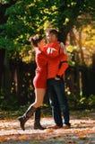 El caer en otoño del amor Imagenes de archivo