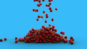 El caer fresca de los cherrys Animación realista aislante almacen de video