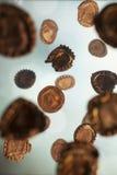El caer oxidada de los casquillos Fotos de archivo libres de regalías