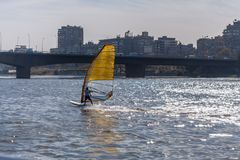 El Cairo, Egipto 11 de febrero de 2012: Windsurfers en el río el Nilo en el medio de El Cairo Fotografía de archivo libre de regalías
