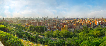 El Cairo en la palma Imagen de archivo