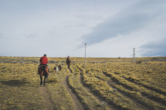 EL CALAFATE, ARGENTINA: Man riding with his dogs. EL CALAFATE, ARGENTINA: Man riding with his dogs in Argentine Patagonia Royalty Free Stock Photo