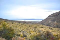 EL CALAFATE, ARGENTINA: sikt på argentinian patagonia Royaltyfri Fotografi