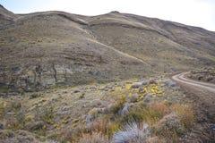 EL CALAFATE, ARGENTINA: sikt på argentinian patagonia Arkivfoto