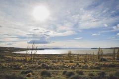 EL CALAFATE, ARGENTINA: Tur till patagonia Argentina i sen höst Royaltyfri Fotografi