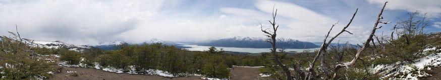 EL Calafate, glaciares parque nacional, Patagonia, la Argentina, Suramérica Imagenes de archivo