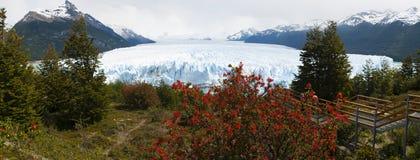 Perito Moreno, glacier, El Calafate, Glaciers National Park, Patagonia, Argentina, South America, nature, landscape royalty free stock photos