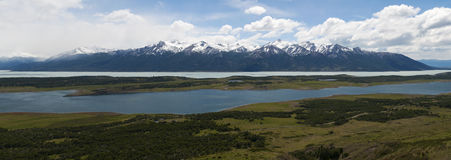 EL Calafate, parc national de glaciers, Patagonia, Argentine, Amérique du Sud Image libre de droits