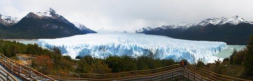 EL Calafate, parco nazionale dei ghiacciai, Patagonia, Argentina, Sudamerica Fotografia Stock Libera da Diritti