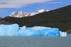 EL Calafate, Patagonia, Argentina Fotografia Stock Libera da Diritti