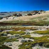 EL Calafate, provincia de Santa Cruz, la Argentina Foto de archivo libre de regalías
