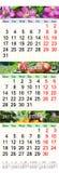 El calendario para julio August September 2017 con tres coloreó imágenes Fotografía de archivo libre de regalías
