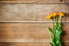 El Calendula florece en fondo de madera en estilo rústico imagen de archivo libre de regalías