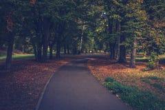El callejón en el parque Imagen de archivo libre de regalías