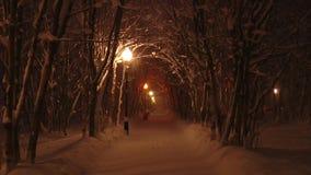 El callejón en el parque del invierno, lámpara de la noche de calle enciende nieve que cae metrajes