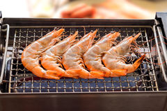 El camarón asado a la parrilla o el Bbq fácil asó a la parrilla el camarón en parrilla eléctrica , c Imagen de archivo libre de regalías
